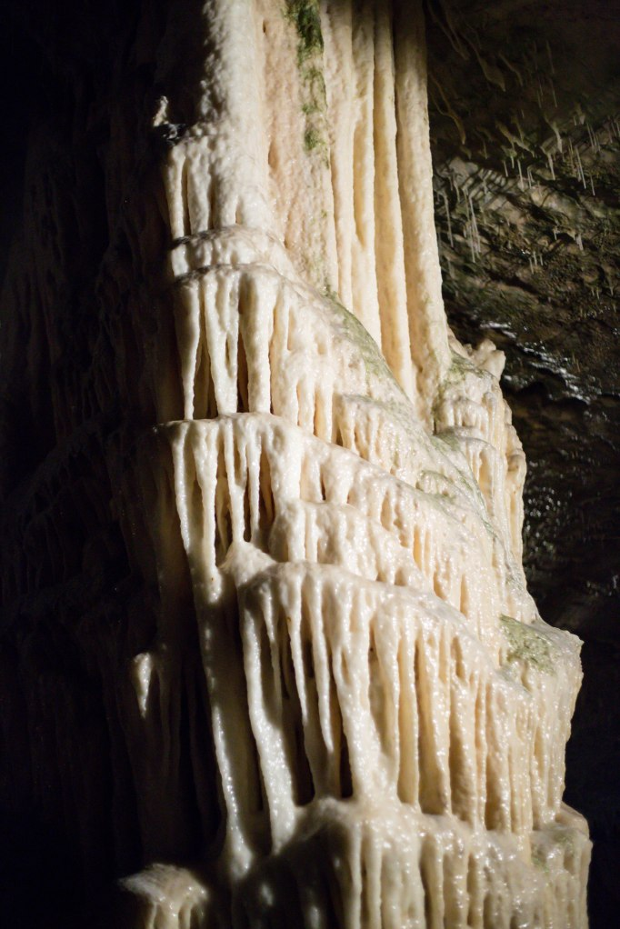 Stalagtites hold tight to the ceiling.  *See, I did listen in middle school science!